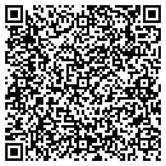 QR-код с контактной информацией организации ДСМ-ТЕХНО, ООО