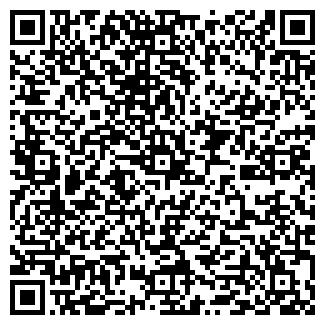 QR-код с контактной информацией организации АВДЕЕВ ИП
