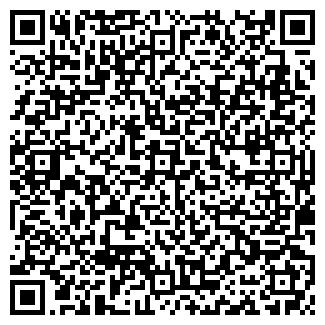 QR-код с контактной информацией организации ВЛАДИНФО, ООО