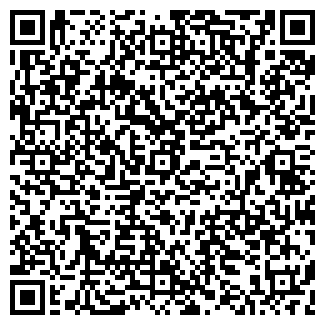 QR-код с контактной информацией организации СВТ-ВЛАДИМИР