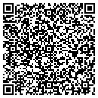 QR-код с контактной информацией организации ВИЗОН, ООО