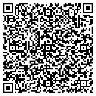 QR-код с контактной информацией организации БИЗНЕС-ЛЕДИ