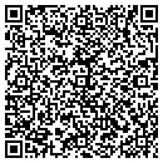 QR-код с контактной информацией организации ШИННЫЙ ДВОР