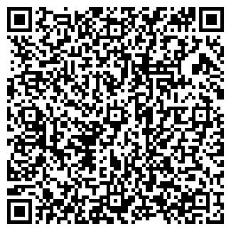 QR-код с контактной информацией организации НОРЛИ, ООО