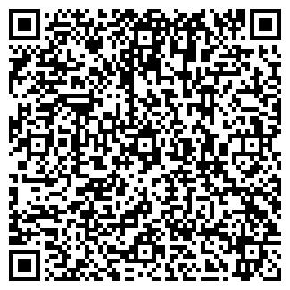 QR-код с контактной информацией организации ПИЛЕНА, ООО