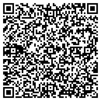 QR-код с контактной информацией организации РЯБИНУШКА ТОО