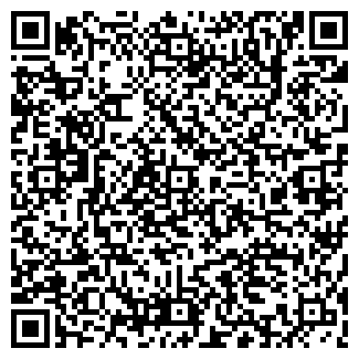 QR-код с контактной информацией организации БИН ПКФ, ООО