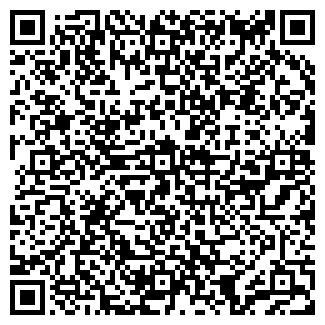 QR-код с контактной информацией организации РОВАЕВ, ЧП