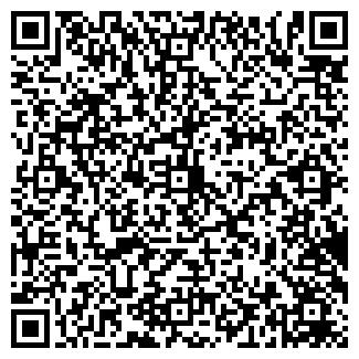 QR-код с контактной информацией организации ИВЦВЕТМЕТ, ООО