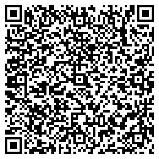QR-код с контактной информацией организации ЧИРКИНА, ЧП