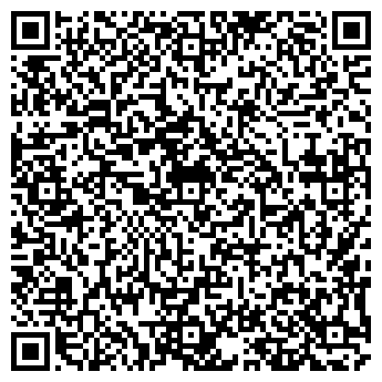 QR-код с контактной информацией организации ЧП ШИШКИН В. Р.