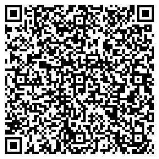 QR-код с контактной информацией организации ТЕМА, ООО