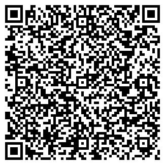 QR-код с контактной информацией организации ICE-ХОЛОД