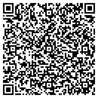 QR-код с контактной информацией организации ВИЛСИ-ПЛЮС