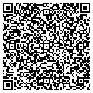 QR-код с контактной информацией организации ВИСО, ООО