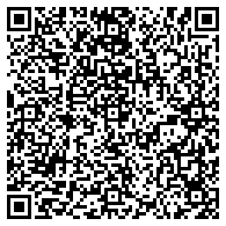 QR-код с контактной информацией организации ВИЛСИ, ООО