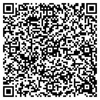 QR-код с контактной информацией организации ООО АРКТИКА