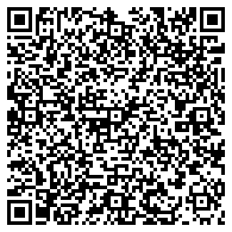 QR-код с контактной информацией организации ШЕЛКОВКА, ЗАО