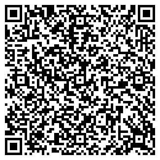 QR-код с контактной информацией организации НАВТЕКС