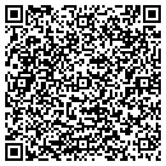QR-код с контактной информацией организации МЕГАВЛАД, ООО