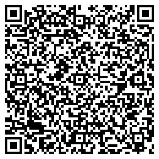 QR-код с контактной информацией организации КОЧКИН, ЧП