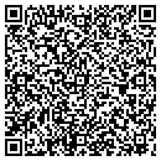 QR-код с контактной информацией организации ВЭЛЬС, ООО