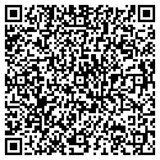 QR-код с контактной информацией организации ООО РОМАШКА