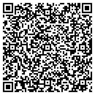 QR-код с контактной информацией организации ТОО ЗВЕЗДА