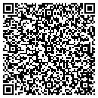 QR-код с контактной информацией организации СИТ, ООО