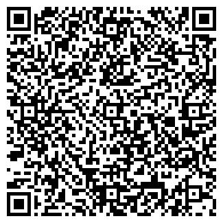 QR-код с контактной информацией организации БАГИРА ПЛЮС, ООО