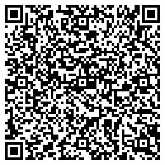 QR-код с контактной информацией организации СИНЬОРА