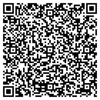QR-код с контактной информацией организации ТОО ВЕСНА