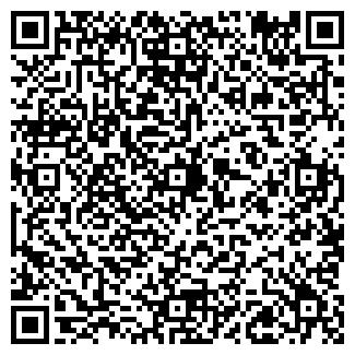 QR-код с контактной информацией организации ТОО ШЕМЯТИНО
