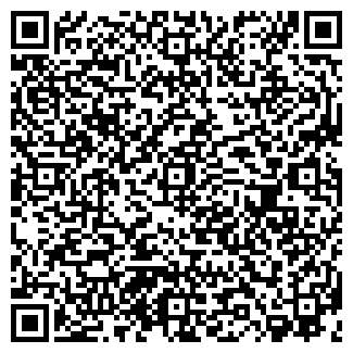 QR-код с контактной информацией организации ГЕО-СЕРВИС