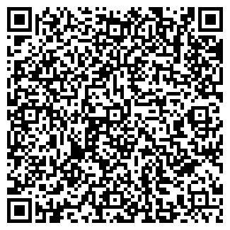 QR-код с контактной информацией организации СКИТ-ХОЛДИНГ