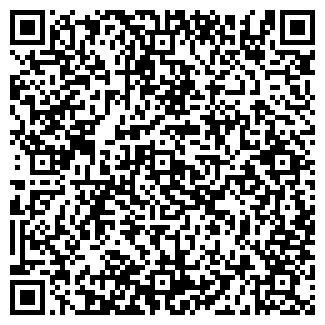QR-код с контактной информацией организации ВЕКТОР МАГАЗИН