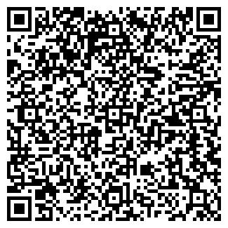 QR-код с контактной информацией организации СИСТЕМА ПКП, ООО