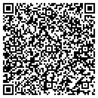QR-код с контактной информацией организации ОРМЕТИЗ ТД, ООО