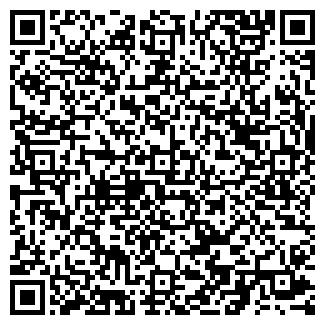 QR-код с контактной информацией организации ВИЛПО, ЗАО