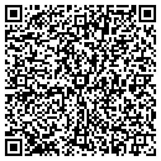 QR-код с контактной информацией организации ДОМ МАГАЗИН