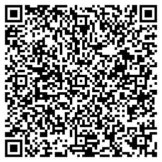 QR-код с контактной информацией организации ИП ВЕЛИКАЯ Г.В.