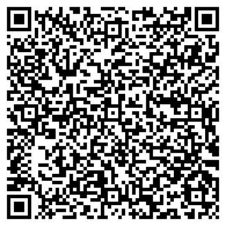 QR-код с контактной информацией организации ИП ВОРОНОВА И.О.