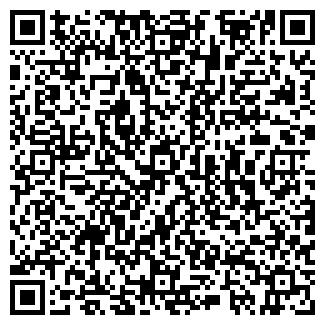 QR-код с контактной информацией организации ООО ГАЛЕРЕЯ ВИН