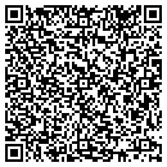 QR-код с контактной информацией организации ИП АНДРЕЕВА Г.Г.