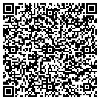 QR-код с контактной информацией организации ИП ЧИЖИКОВА Е.В.