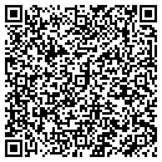 QR-код с контактной информацией организации ШАЛАЕВ К.А., ИП