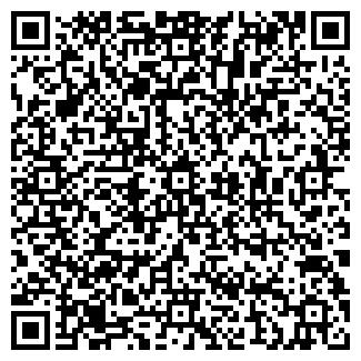 QR-код с контактной информацией организации ИП СИНЕВА Е.В.