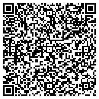 QR-код с контактной информацией организации ООО ЛИНГВА-СЕРВИС