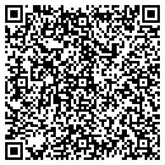 QR-код с контактной информацией организации ИП НИКОЛЕНКО В.Н.
