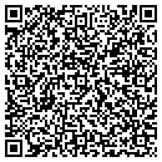 QR-код с контактной информацией организации ИП ШАМРАЕВА М.М.